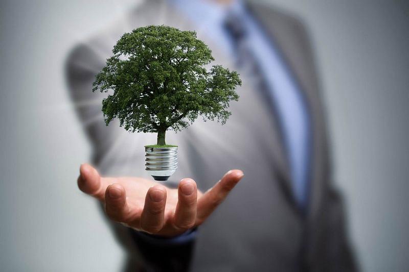 Enerji Verimliliği ve Enerji Yönetimi